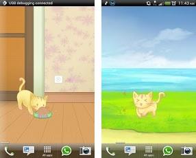 misc_dancing cat3